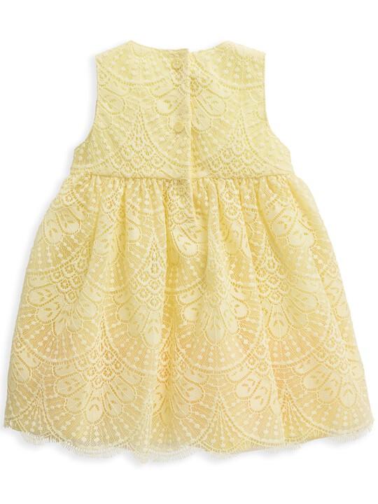 فستان دانتيل أصفر image number 4
