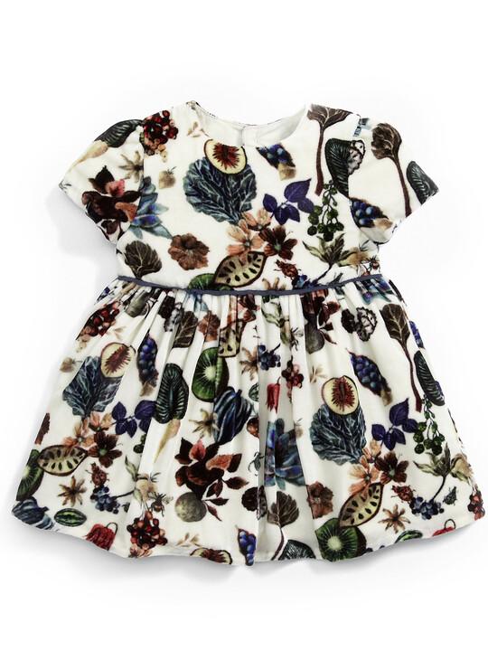 فستان بطبعة ليبرتي مخملي image number 1
