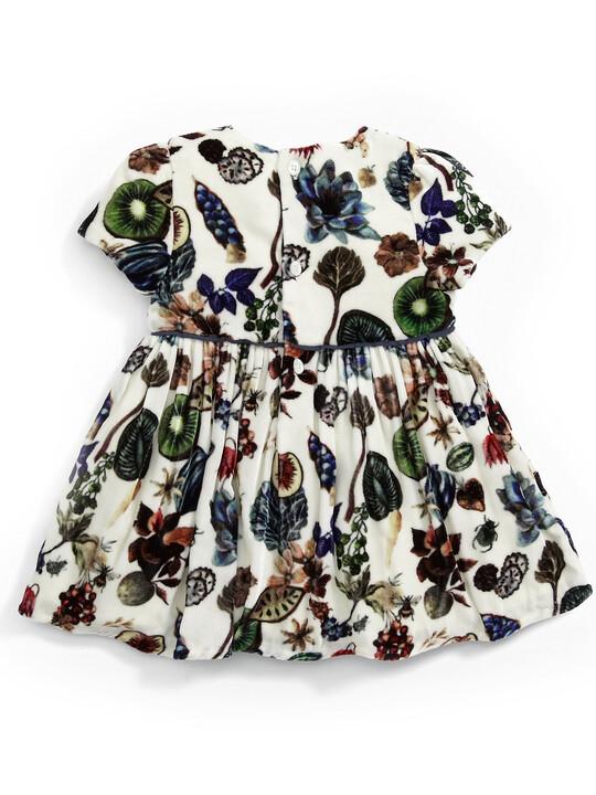 فستان بطبعة ليبرتي مخملي image number 2